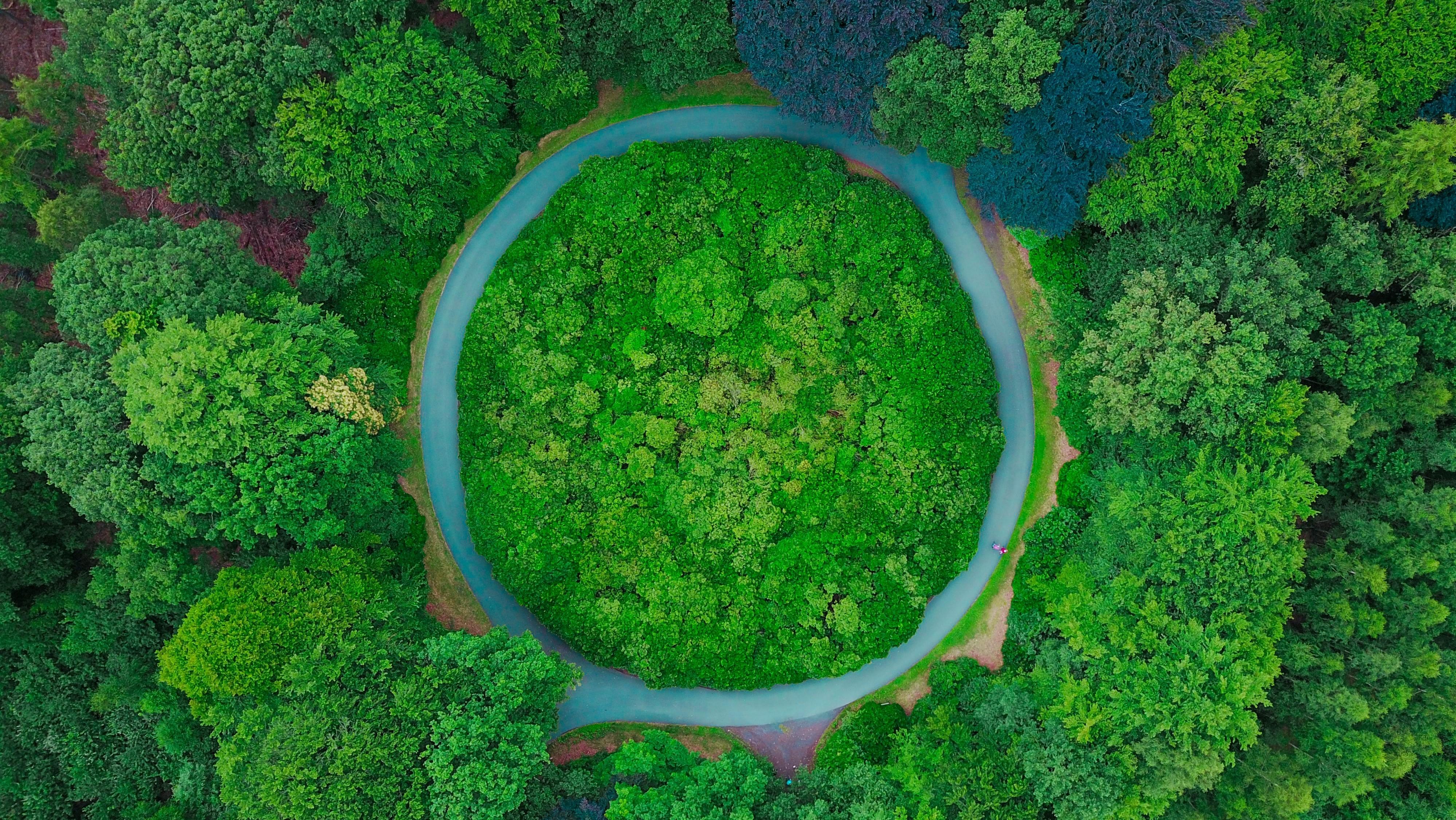 Kuidas ringmajanduse mudel looduse ja ettevõtluse omavahel seob?